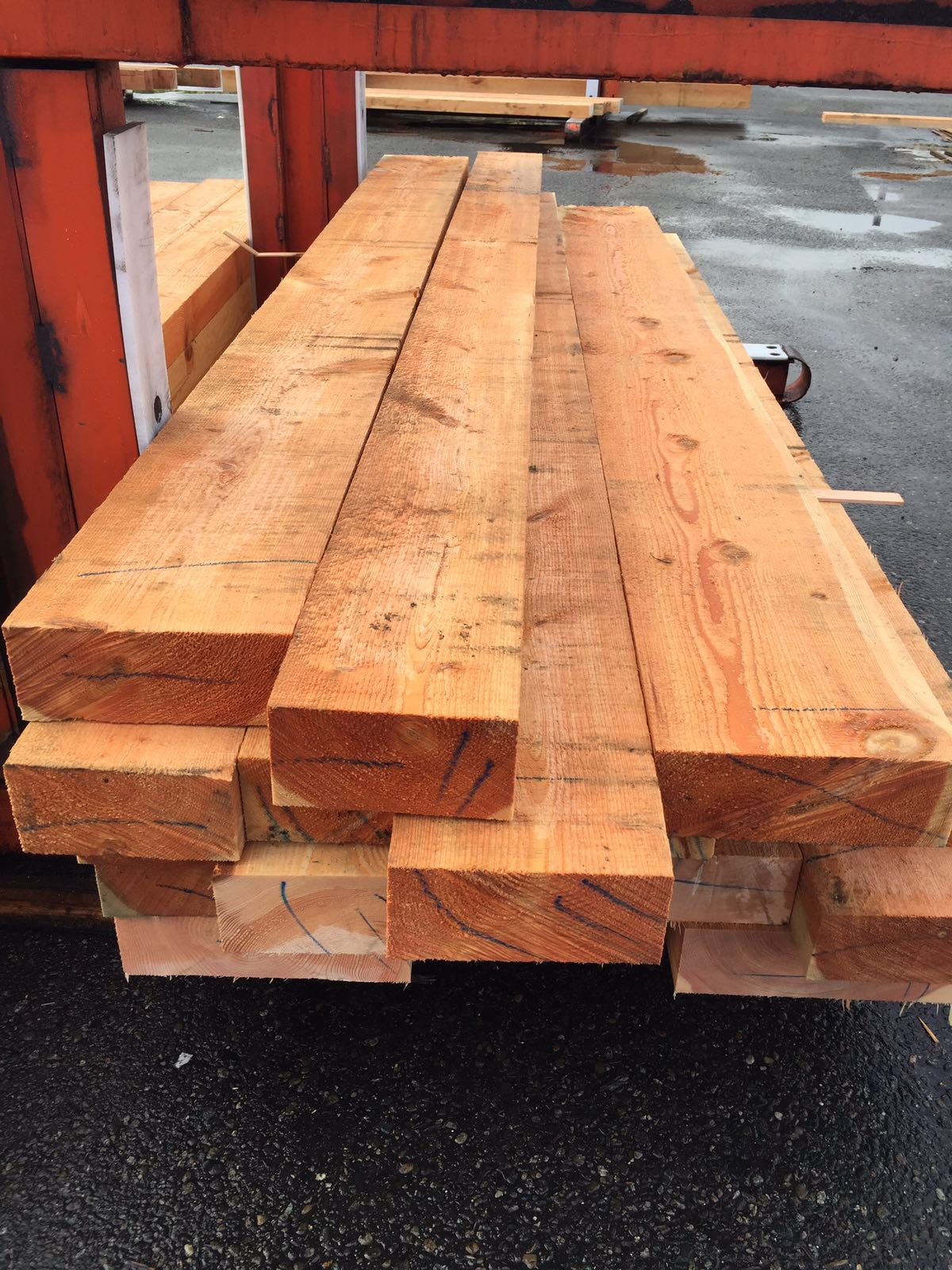 Agathis Sawn Timber ~ Custom cut lumber logs ajm international development corp